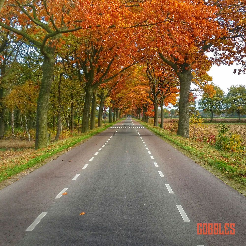 Cobbles - Bof Season - kleuren