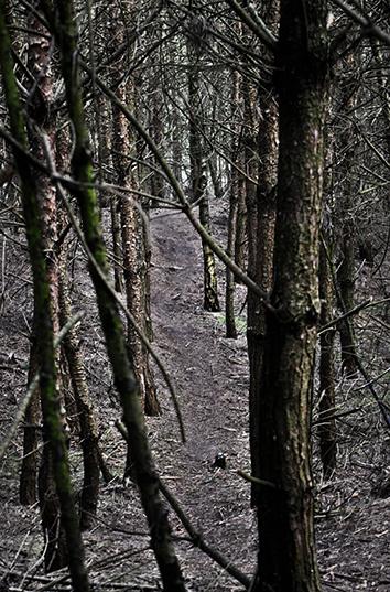 Cobbles mountainbiken mountainbike meer dan winterfiets