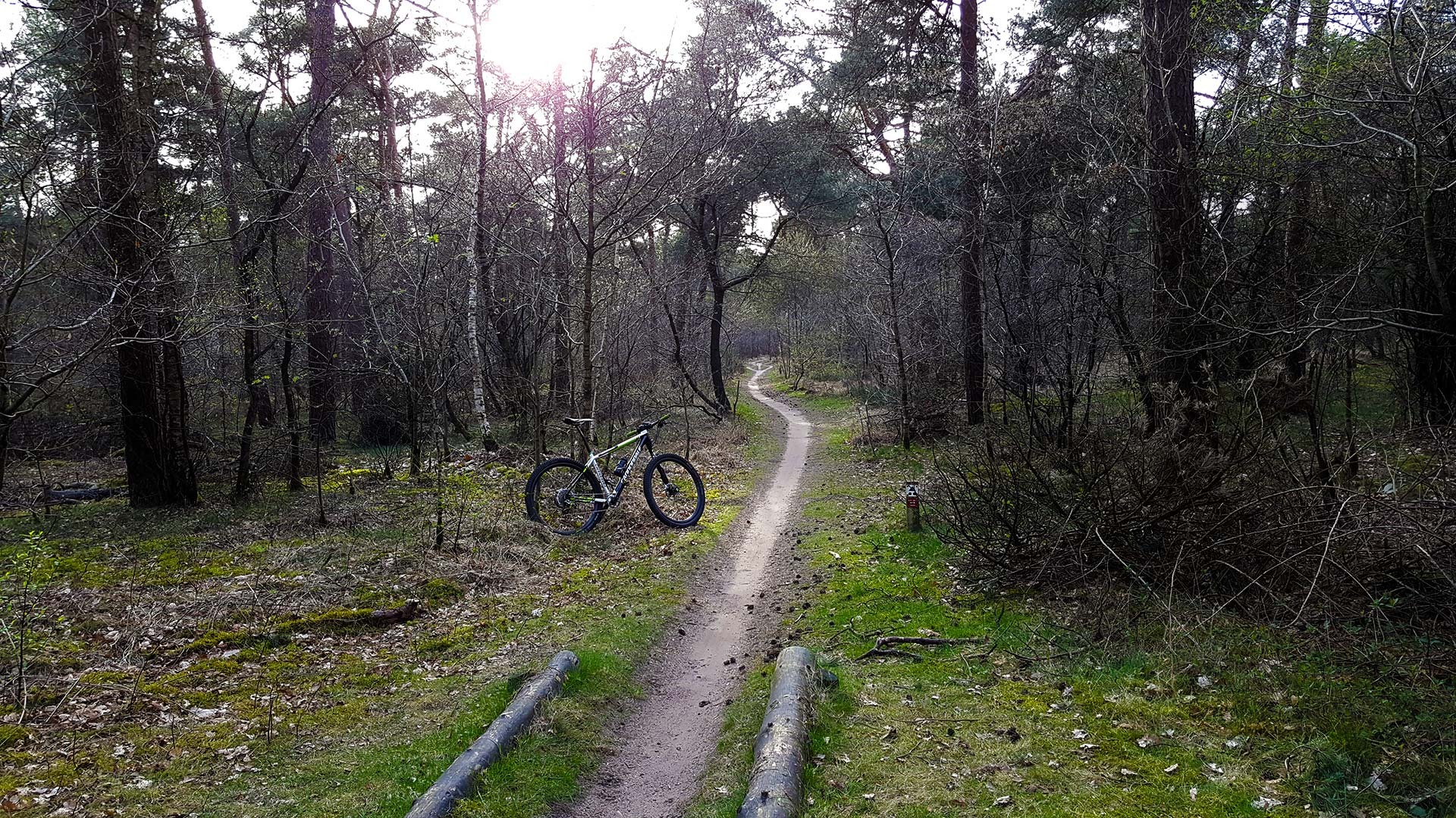 Mountainbikeroute Dorst: 9 kilometer slingerende singletrack