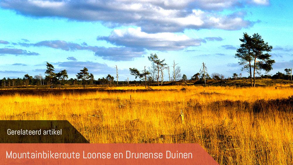 cobbles-mountainbiken-mountainbikeroute-loonse-drunense-duinen
