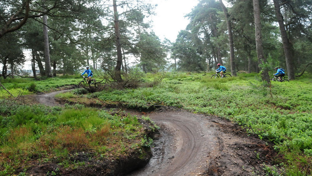 cobbles wielrennen mountainbiken toertochten juli 2017 sallands mooiste