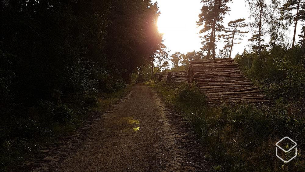 cobbles mountainbiken utrechtse heuvelrug amerongen