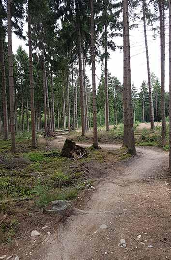 cobbles mountainbiken utrechtse heuvelrug