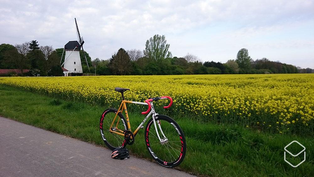 cobbles wielrennen routes nijmegen velden