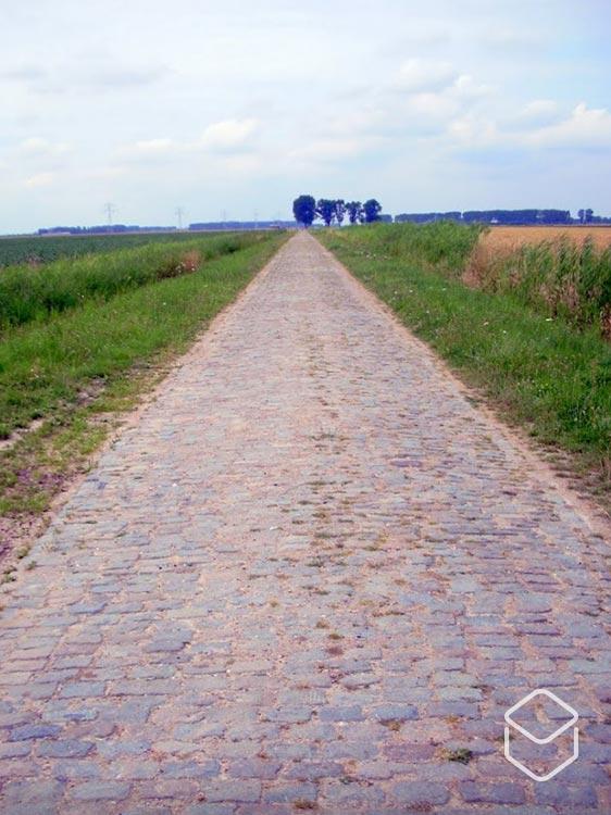 cobbles-kasseien-zeeland-timmermansweg-tekst