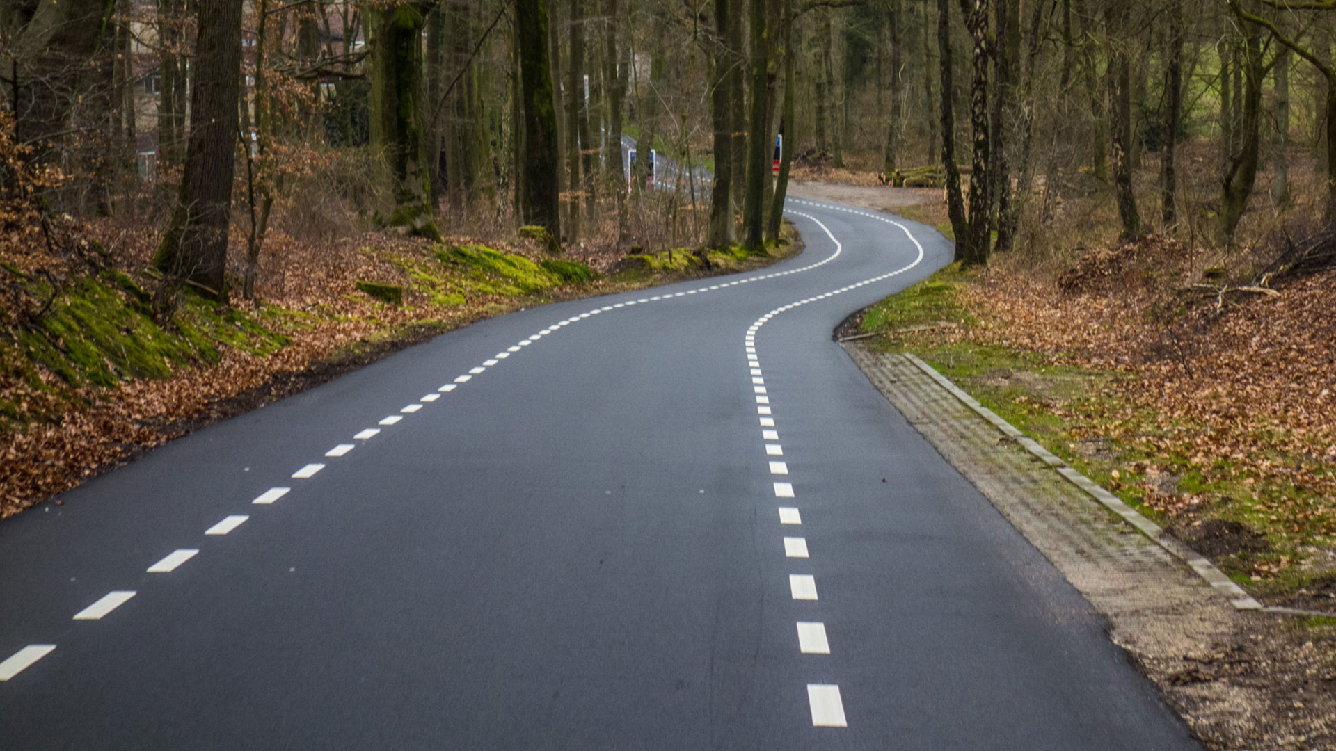 Wielrennen op de Utrechtse Heuvelrug: drie gave routes