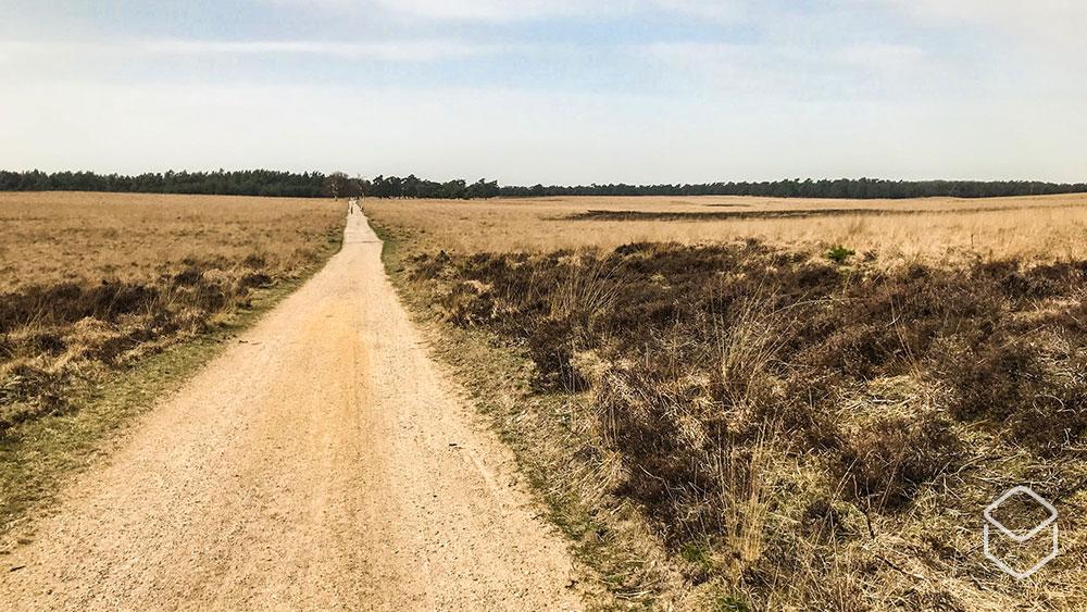 cobbles-wielrennen-graveltochten-2019-backroads