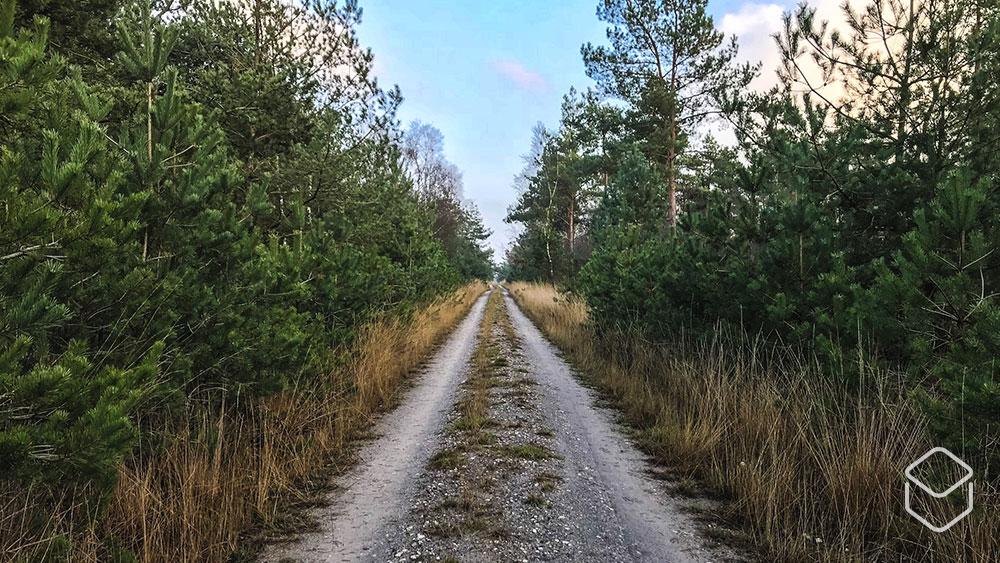 cobbles-wielrennen-graveltochten-2019-offgrid-gravel-series