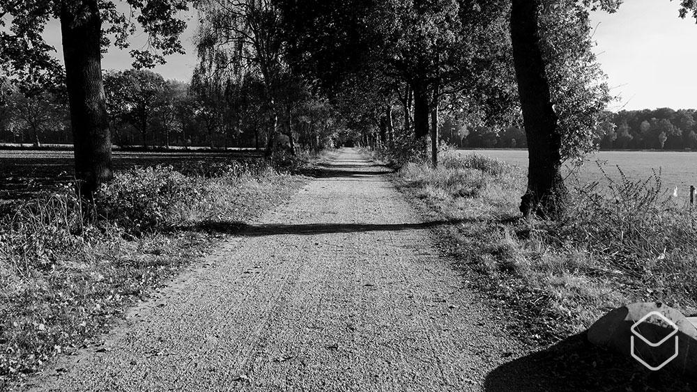 cobbles-wielrennen-graveltochten-2019-strade-bianche-achterhoek