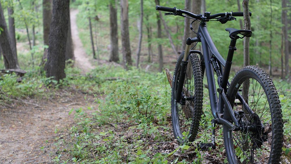 cobbles-wielrennen-redenen-mountainbike-bos