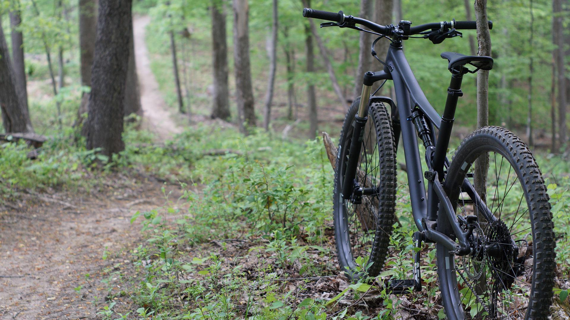 Mountainbikeroute Zeist/Austerlitz: twee toffe tracks op de Utrechtse Heuvelrug