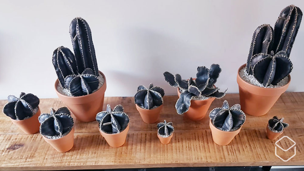 cobbles-wielrennen-duurzame-fietscadeaus-global-recycling-day-cactus