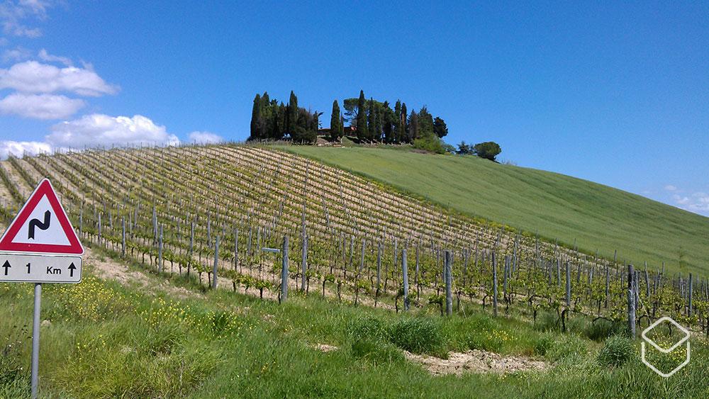 cobbles-wielrennen-in-toscane-routes-chianti-uitzicht
