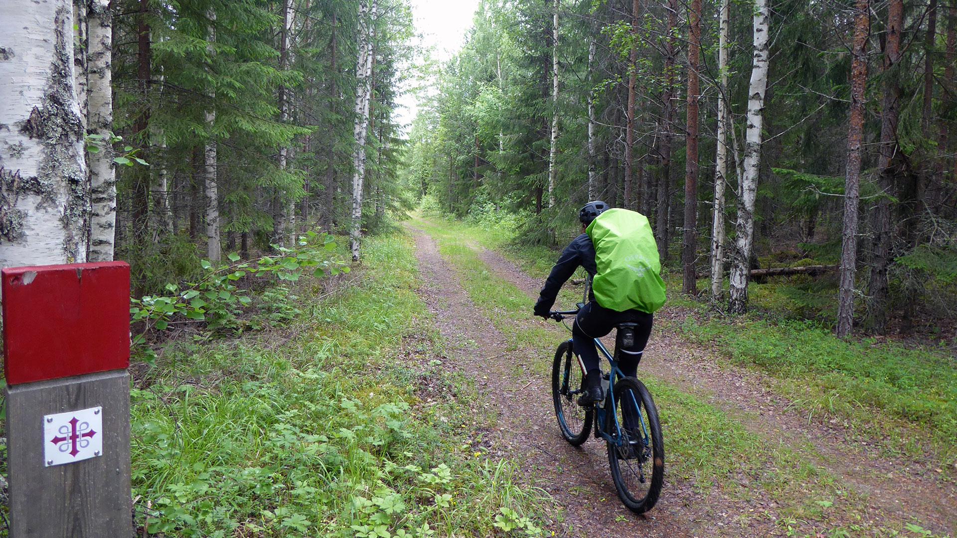 Bikepacking in Scandinavië: van kust naar kust over het Sint Olavspad