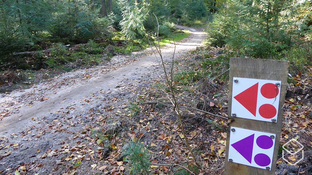 cobbles-mountainbiken-routes-zuid-veluwe-update-ede-lunteren