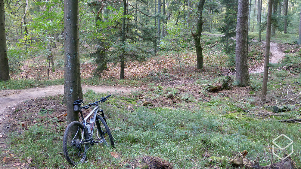 cobbles-mountainbiken-routes-zuid-veluwe-update-lunteren-area51