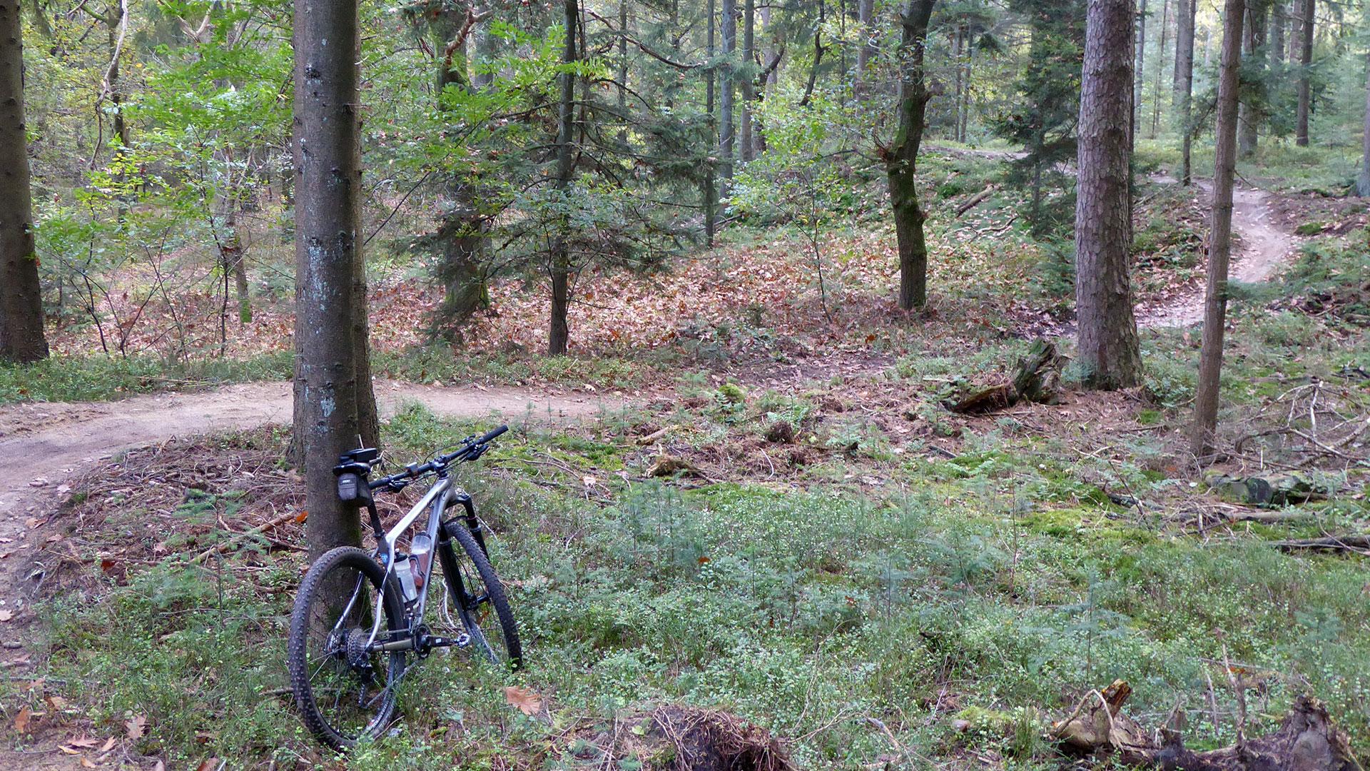 Mountainbikeroutes op de Zuid-Veluwe (update): veel werk verzet