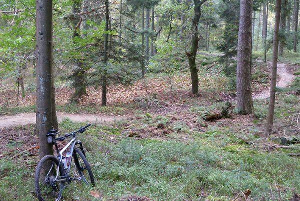 cobbles-mountainbiken-routes-zuid-veluwe-update-uitgelicht