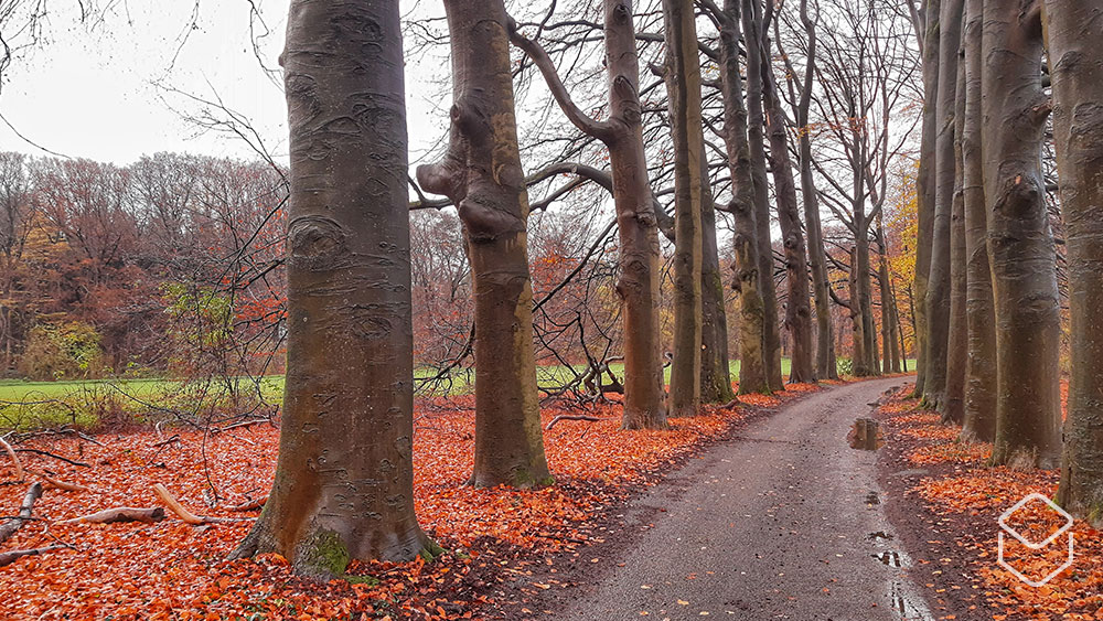 cobbles-wielrennen-nl-tour-rides-gpx-herfst-santa-herfst-2