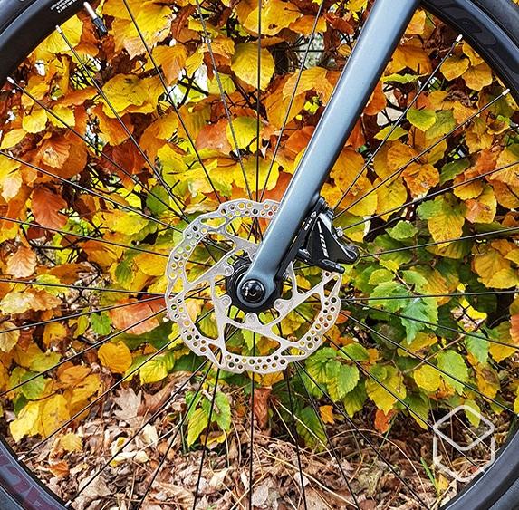 cobbles-wielrennen-fietsen-zonder-fratsen-wiel-herfst